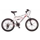 Salcano EFES 20 Çocuk Bisikleti